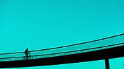 Cykelslangen aka Bryggebroen ved Fisketorvet <br /> #fujifilm #fujifilmnordic #dkfujix #fujifeed #grafic #bridge #color # black #silhuet #bike #cykel #cykelist #cykelbro #fisketorvet #_53mm_ #fujinon #fujifilm35mmf2 #fujifilm_xseries #xt2 #mitkbh #delditkbh  #cph #kbh