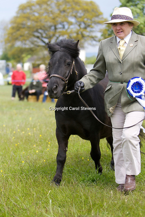 Great Harwood Show<br />