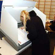 Stemmen Landelijke verkiezingen 2003, stemcomputer