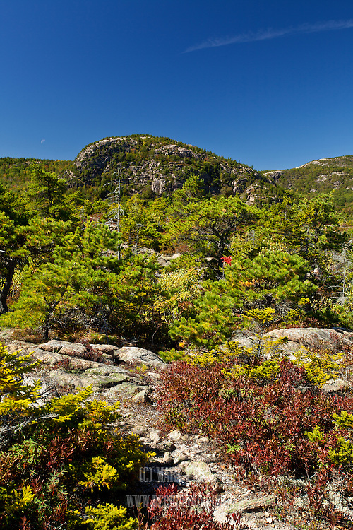 The Beehive as seen from the Great Head Trail in Acadia National Park.