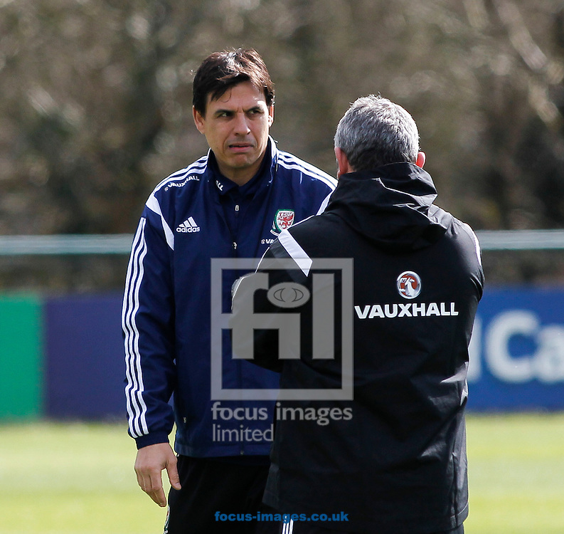 Chris Coleman, Manager of Wales Training at the Vale Resort, Hensol<br /> Picture by Mike Griffiths/Focus Images Ltd +44 7766 223933<br /> 25/03/2015