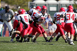 04 October 2008: Evan Jones hands off to Jake Smith in a battle between the Carthage Red Men and the Illinois Wesleyan University Titans, Game action was at Wilder Field on the campus of Illinois Wesleyan University in Bloomington Illinois.