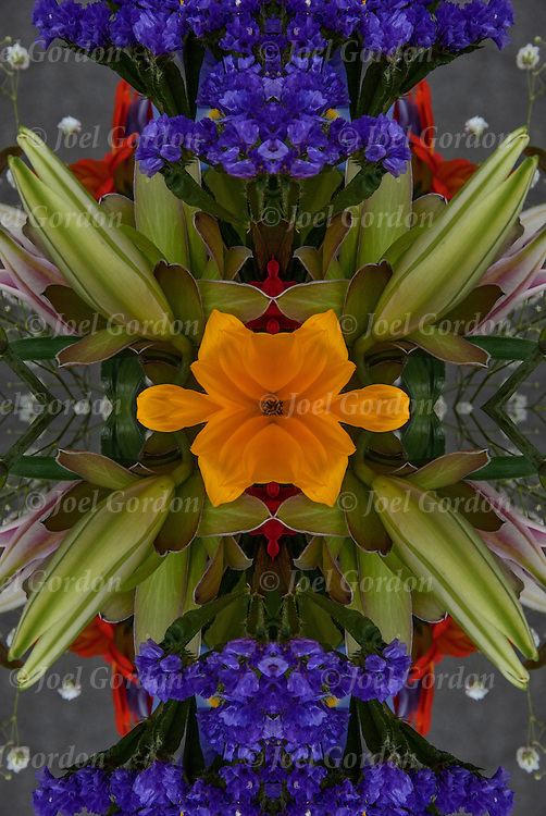 Photographic series of digital  flora computer art.<br /> <br /> Two or more layers used to enhance, alter and manipulate the image, creating an abstract surrealistic mirrored symmetry.