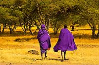 Maasai tribe men, near the Manyatta village, Ngorongoro Conservation Area, Tanzania