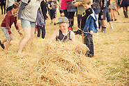 Wickerman Festival 2015