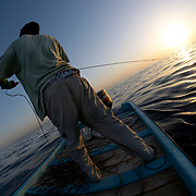 Oman, Indian Ocean. March/04/2008.<br /><br />Pulling in the setting sun; fishing for yellowfin tuna off the coast of Oman. After following a school of dolphin between Ra's al-Hadd and Sur, a bite comes on the end of a hand held line and hook &ndash; one fisherman, one fish.