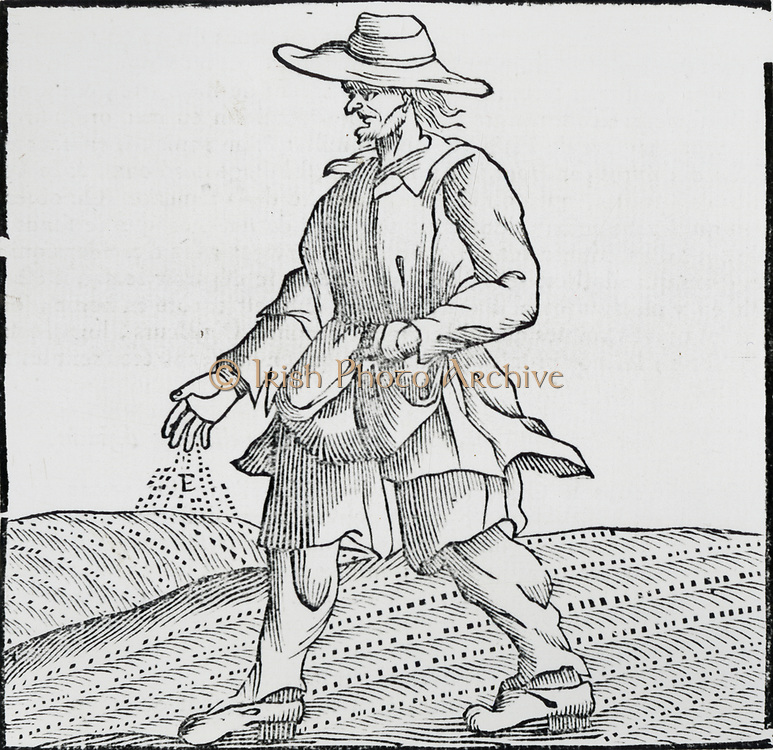 Sowing seed broadcast using a sowing sheet  to hold the grain. Woodcut 1762.