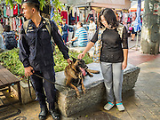 24 AUGUST 2015 - BANGKOK, THAILAND: A Thai woman approaches a policeman with his bomb sniffing dog in central Bangkok. One week after the a bomb at the Erawan Shrine in the center of Bangkok killed dozens and hospitalized scores of people, police have not made any arrests. Police bomb sniffing dogs have been deployed to malls and markets around Bangkok. There was a large memorial service sponsored by businesses close the bomb site Monday evening.      PHOTO BY JACK KURTZ