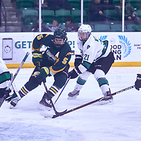 4th year forward, Jaycee Magwood (5) of the Regina Cougars during the Women's Hockey Away Game on Fri Jan 11 at University of Saskatoon. Credit: Arthur Ward/Arthur Images