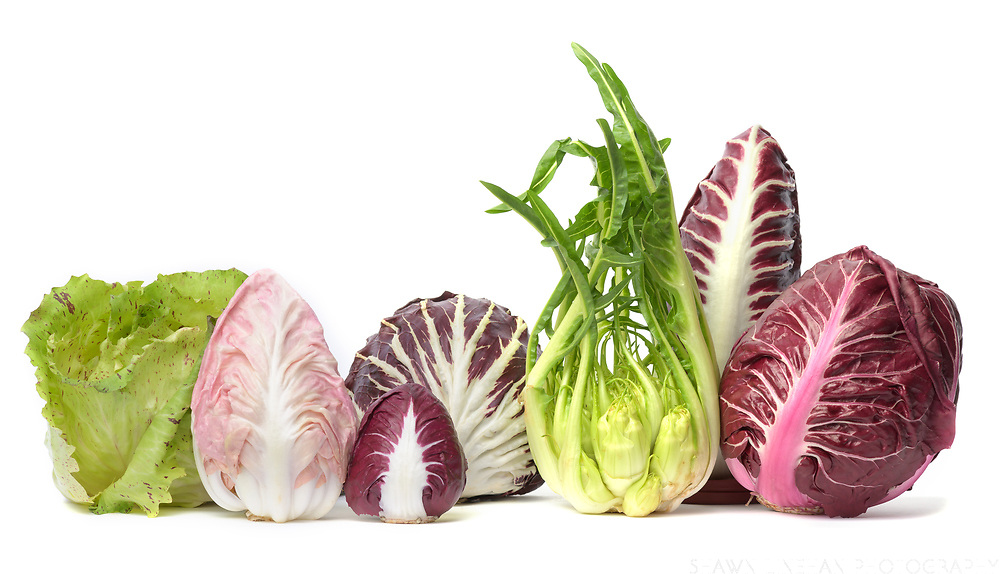 Chicories grown by Local Roots Farm