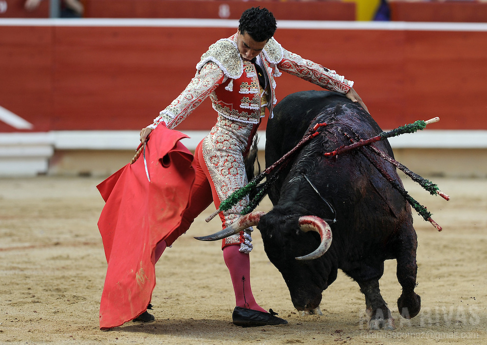 Spanish matador Morenito de Aranda performs a pass to his Cebada Gago bull, during the third corrida of the San Fermin Festival, on July 9, 2012,  in the Northern Spanish city of Pamplona. PHOTO / Rafa Rivas