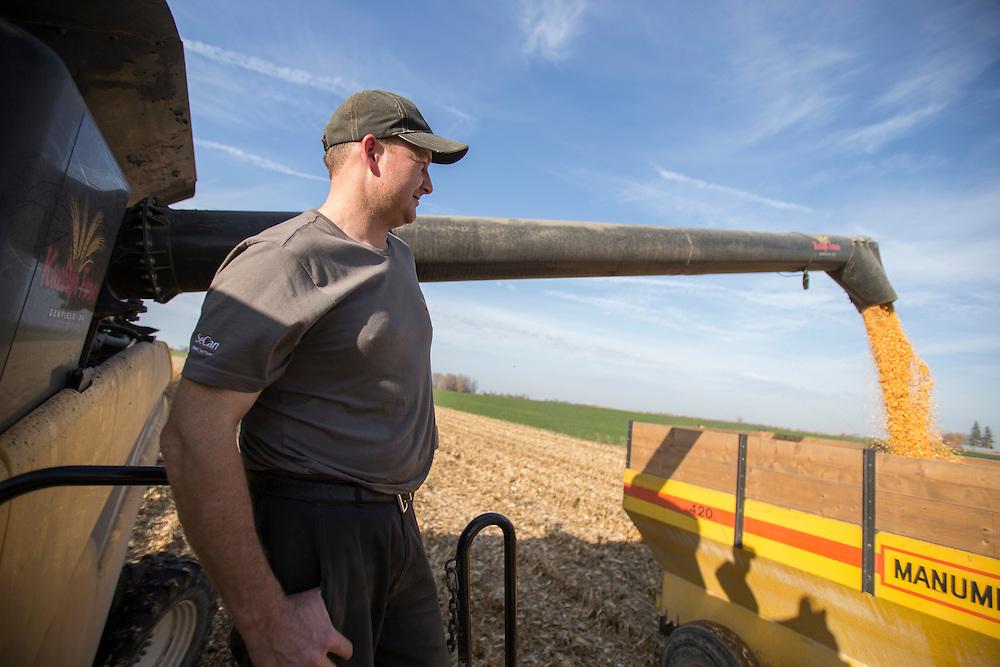 Ralph Kuebler looks on as he unloads some corn near Ilderton, Ontario, Tuesday, November 1, 2016.<br /> Farmers Forum/ Geoff Robins