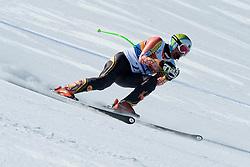 WILLIAMSON Chris Guide: FEMY Robin, CAN, Downhill, 2013 IPC Alpine Skiing World Championships, La Molina, Spain