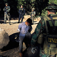 "The national forests in California and across the nation are increasingly being used to grow marijuana. The clandestine grows are shielded by tree canopies and are often close to, if not actually inside, recreational usage areas so that the growers can appear to be normal recreational users. A task force comprised of Sheriff deputies, US Forest Service Agents and Dept. of Justice agents raided a grow in the Tahoe National Forest that yielded 5000 plants in the 2""-12"" range and arrested one Mexican national who was tending the grow. Here, task force agents guard the man who said he was from Michoacan, Mexico."
