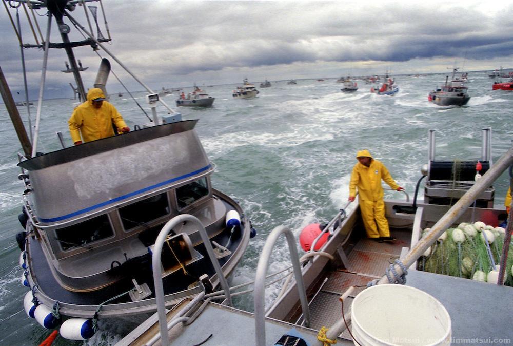Combat fishing for salmon on the Egigik River in Bristol Bay, Alaska.