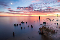 This photo was taken down the road from where I live, on the Currituck sound
