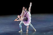 Ballet Arizona Corporate Luncheon