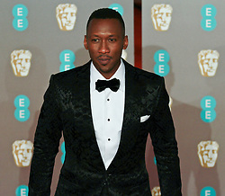 Mahershala Ali on the red carpet ahead of the 2019 British Academy Film Awards at the Royal Albert Hall in London, England on 10th Feburary 2019. ©Ben Booth/Edinburgh Elite media
