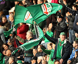 London Irish fans celebrate - Photo mandatory by-line: Robbie Stephenson/JMP - Mobile: 07966 386802 - 05/04/2015 - SPORT - Rugby - Reading - Madejski Stadium - London Irish v Edinburgh Rugby - European Rugby Challenge Cup