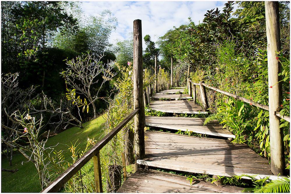 Garden of the Sleeping Giant in the City Nadi on the Island of Viti Levu, Fiji