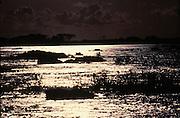 encontro do rio araguaia com o rio tocantins...encounter of the river araguaia with the river tocantins...encontro do rio araguaia com o rio tocantins...encounter of the river araguaia with the river tocantins.
