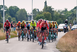 Peloton with Team Sunweb (GER,WT,Cervélo) leading during 2019 Dutch National Road Race Championships Men Elite, Ede, The Netherlands, 30 June 2019, Photo by Pim Nijland / PelotonPhotos.com | All photos usage must carry mandatory copyright credit (Peloton Photos | Pim Nijland)
