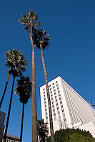 United States District Court and Palm Trees, Los Angeles, California