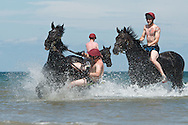The Household Cavalry Mounted Regiment, exercise their horses on Holkham Beach, Norfolk during their annual training camp in Norfolk.