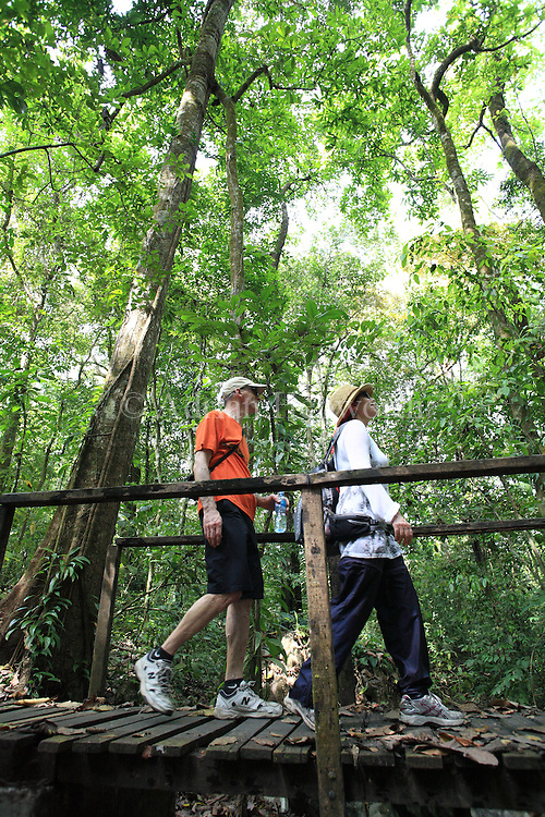 Tourists on rainforest trail in Cabo Blanco Nature Refuge, mid-Pacific coast of Costa Rica.<br /> <br /> For pricing click on ADD TO CART (above). We accept payments via PayPal.