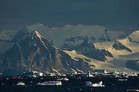 British Antarctic Survey airplane in flight over the Antarctica Peninsula.
