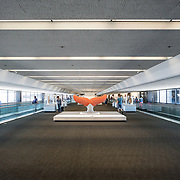 A sculpture of a whale tail constructed from rope by artist Ethan Estess on display in a gallery of reclaimed materials in Terminal 3 of San Francisco International Airport. Passengers walk by, and on each side of the frame are moving walkways. The items are part of an exhibit titled the Art of Recology: The Artist in Residence Program 1990-2013 that makes use of reclaimed and recycled materials.
