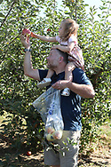 STARLIGHT, IN, -- Gemma picking apples and pumpkins, Sunday, Sept. 22, 2019 at the Huber's Orchard in STARLIGHT.