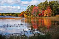 Autumn At Somes Pond, Mount Desert Island, Acadia National Park, Maine, USA