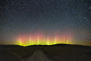 In late September a high speed solar wind stream reached earth, causing a G1 geomagnetic storm. The aurora borealis became visible in the northern part of the United States. Around here the weather was completely clear and there was no moon making conditions perfect for viewing the northern lights. I went to the grasslands outside of Lodge Grass, Montana, where there was very little light pollution. The aurora was at it's best shortly before midnight. While the pillars danced from right to left, nearby cows mooed and coyotes howled. Quite a few meteors and satellites lit up the sky as well. The geomagnetic storm is ongoing and the aurora may be visible again tonight.