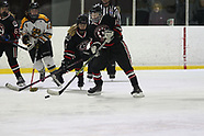SAT 1010 TROY LADY STING V CHICAGO BRUINS