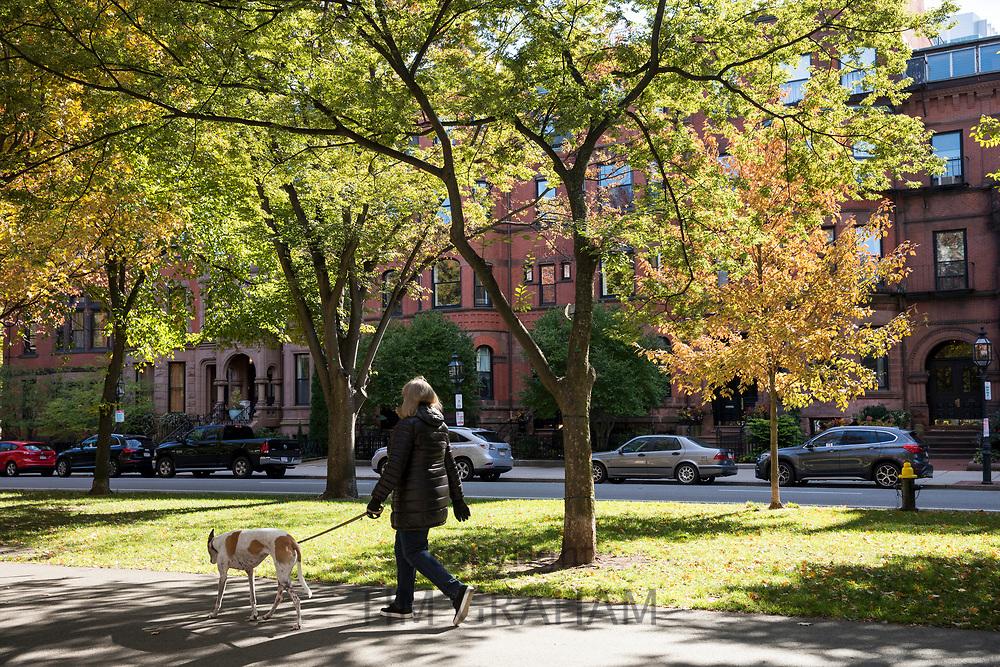 Woman walking her dog in Commonwealth Avenue Mall in Boston, USA