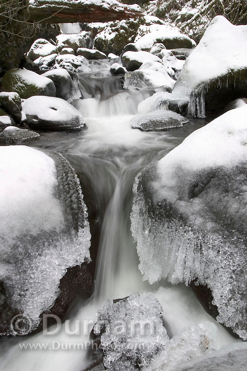 Elowah Creek during Winter, Columbia River Gorge National Scenic Area, Oregon.
