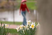 Spring 2007 Flowers