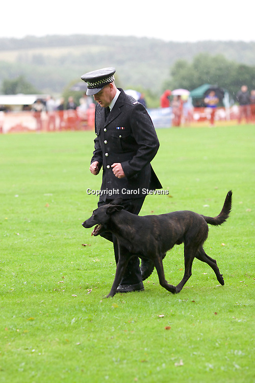 Fireside K9 Police Dog Trials September 2016  Temple Newsam, Leeds