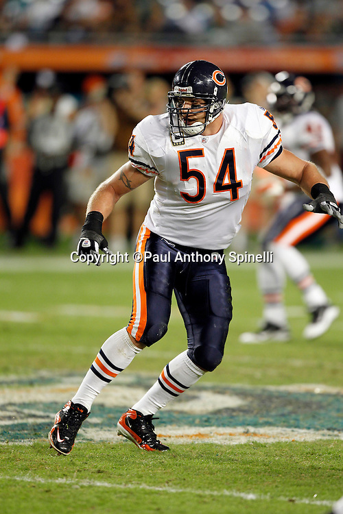 Chicago Bears linebacker Brian Urlacher (54) chases the action during the NFL week 11 football game against the Miami Dolphins on Thursday, November 18, 2010 in Miami Gardens, Florida. The Bears won the game 16-0. (©Paul Anthony Spinelli)