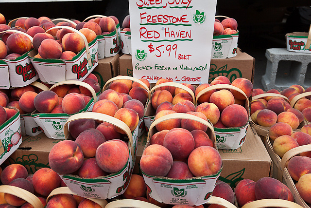 Baskets of freestone Red Haven peaches at a farmers market.