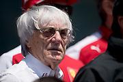 April 10-12, 2015: Chinese Grand Prix - Bernie Ecclestone