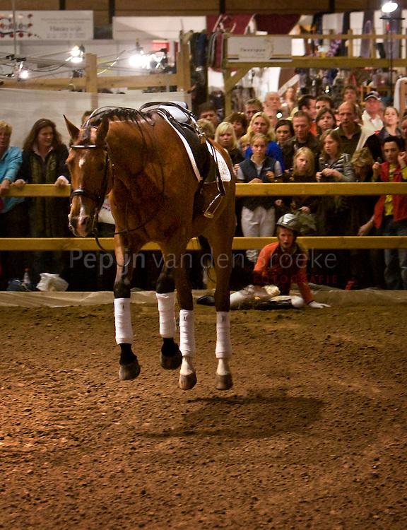 anky van grunsven  valt van haar paard in martini plaza foto: Pepijn van den Broeke