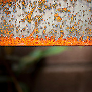 Steel stormwater planter rust detail. Stormwater facilities, American Institute of Architects (AIA) Building, Portland, Oregon.