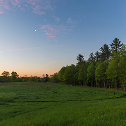 Hay field at dawn - Emery Farm in Durham, New Hampshire.