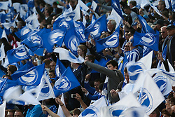 Brighton & Hove Albion fans wave their flags - Mandatory by-line: Jason Brown/JMP - 16/05/2016 - FOOTBALL - Amex Stadium - Brighton, England - Brighton and Hove Albion v Sheffield Wednesday - Sky Bet Championship Play-off Semi-final second leg