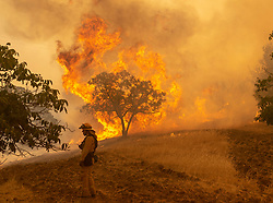 Fire fighter Wyatt Belden from Gold Ridge Fire Protection in Sonoma County, monitors a fire burning off Keck Road, just west of Lakeport, CA, USA, on Monday, July 30, 2018. Photo by Jose Luis Villegas/Sacramento Bee/TNS/ABACAPRESS.COM
