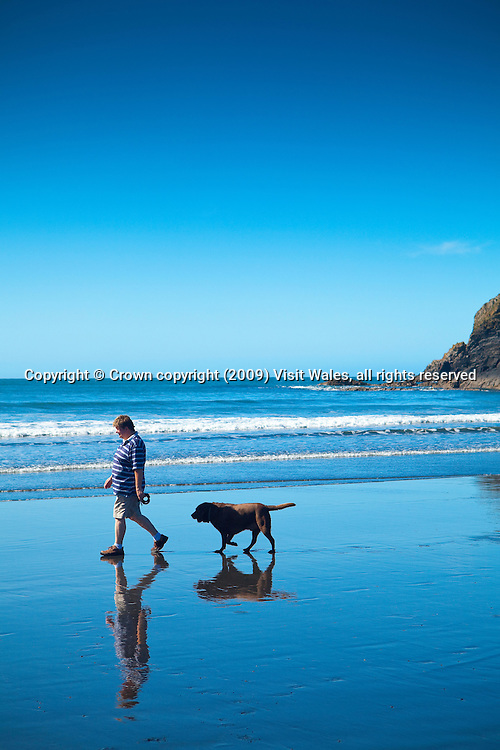 Man and dog walking on beach, reflected in wet sand<br /> Abereiddi<br /> Pembrokeshire<br /> South<br /> Walking<br /> Activities &amp; Sports