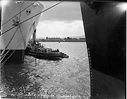 """22/08/1962<br /> 08/22/1962<br /> 22 August 1962<br /> Ships and Tug in Collission: While bringing the U.S Lines """"American Veteran"""" to its berth at Alexandra Basin, Dublin this morning the tug """"Anna Liffey"""" had its propellor fouled by the American ship's anchor chain, causing the ship to swing loosely toward the dockside, and eventually coming into collision with the German ship """"Cap Roca"""", damaging the portside."""