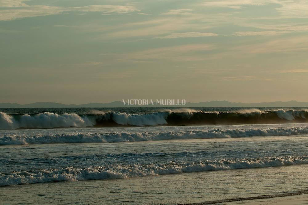 Es una muy conocida playa del Pac&iacute;fico paname&ntilde;o, a unos 25 minutos al suroeste de la ciudad de David y a unos 35 minutos al este de la frontera con Costa Rica. Playa La Barqueta combina toda la belleza y aventura de una larga playa de arenas blancas con la comodidad del alojamiento en un resort o en la cercana ciudad de David. Est&aacute; rodeada de &aacute;reas de alta biodiversidad y suele ser una zona de anidamiento de tortugas. En 1986 se organiz&oacute; el Comit&eacute; Ambiental de Alanje y junto con habitantes de Guarumal, aplicaron algunos programas de protecci&oacute;n.<br /> <br /> En el a&ntilde;o 1994 se le dio a una parte de este conjunto costero la categor&iacute;a de Refugio de Vida Silvestre de Playa La Barqueta, con unas 5,935 hect&aacute;reas. Entre el paisaje de herbazales y bosques menores de arbusto de sabana, sobresalen los espesos manglares, donde se reproduce parte de la riqueza natural que sostiene a los pueblos de pescadores del Pac&iacute;fico chiricano.<br /> &copy;Alejandro Balaguer/Fundaci&oacute;n Albatros Media.